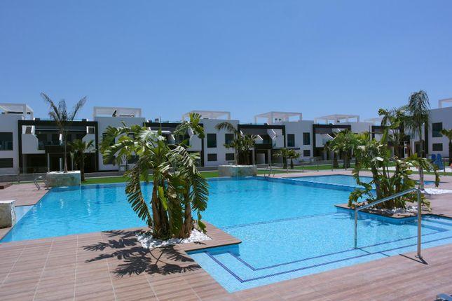 2 bed bungalow for sale in Calle Trigo 03149, Guardamar Del Segura, Alicante