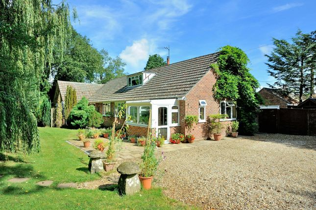 Thumbnail Detached bungalow for sale in The Dell, Station Road, Semley, Dorset