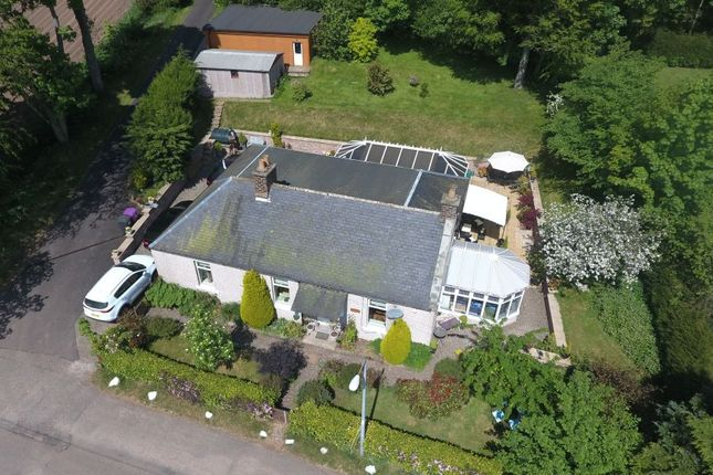 Thumbnail Bungalow for sale in 1 Balhall Lodge Cottage, Menmuir, Brechin
