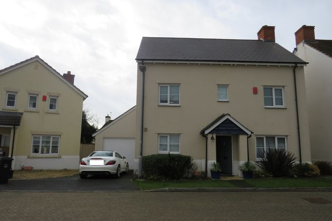 Thumbnail Detached house for sale in Rectory Mews, Hatch Beauchamp, Taunton