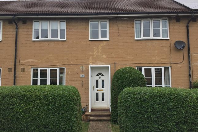 Thumbnail Property to rent in Whitethorn, Welwyn Garden City