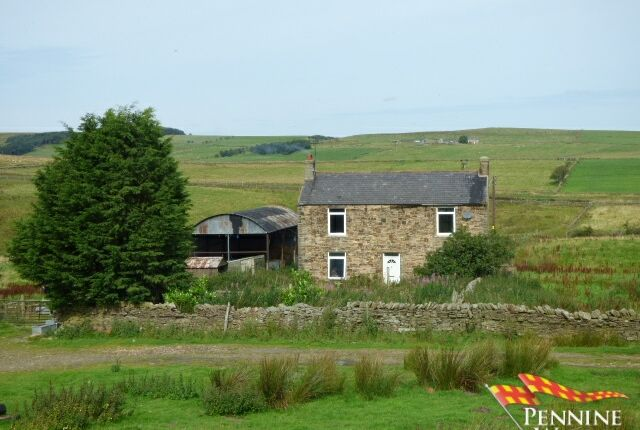 Thumbnail Detached house for sale in Shield Hill, Haltwhistle, Northumberland