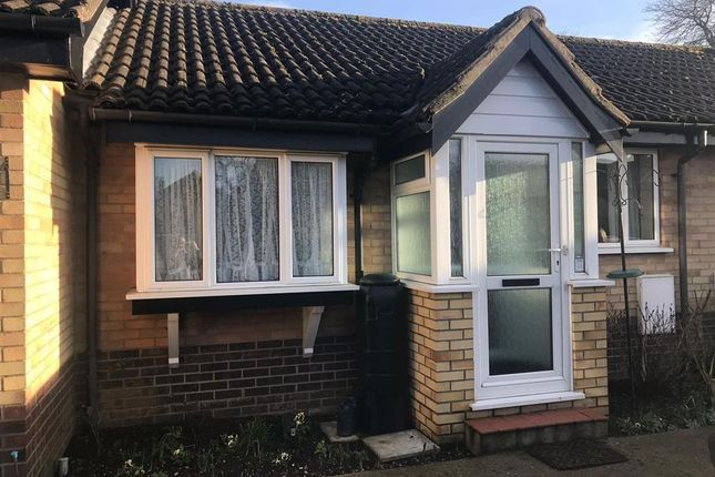Thumbnail Bungalow to rent in Holly Court, Harleston