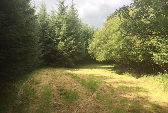 Thumbnail Land for sale in Yarnscombe, Barnstaple