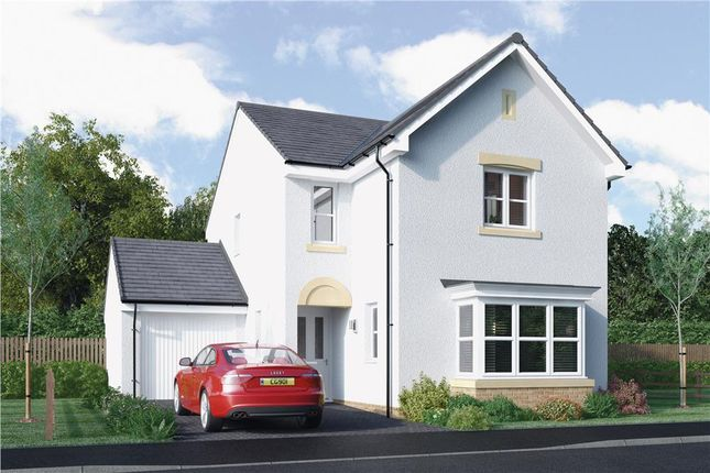 """Thumbnail Detached house for sale in """"Fraser"""" at North Road, Liff, Dundee"""