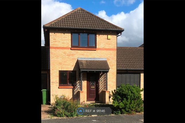 Thumbnail Detached house to rent in Selby Grove, Milton Keynes