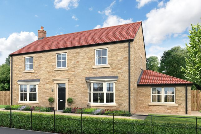 Thumbnail Detached house for sale in Alexander Grove, Low Wood, Swarland