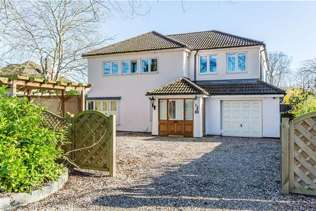 Thumbnail Detached house for sale in Coppice Avenue, Great Shelford, Cambridge