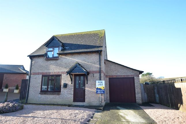 Thumbnail Detached house for sale in Melliars Way, Flexbury, Bude