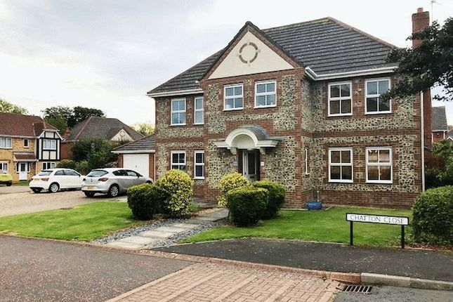 Thumbnail Detached house for sale in Chatton Close, Morpeth