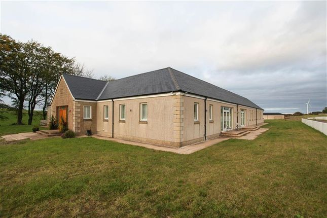 Thumbnail Detached house for sale in Strathaven