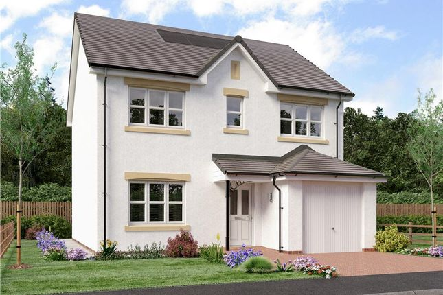 "4 bedroom detached house for sale in ""Shaw"" at Dalkeith"