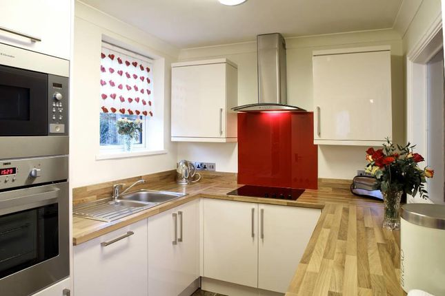 Thumbnail Flat to rent in Torbay Road, Torquay