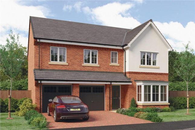 "Thumbnail Detached house for sale in ""The Buttermere"" at Parkside, Hebburn"