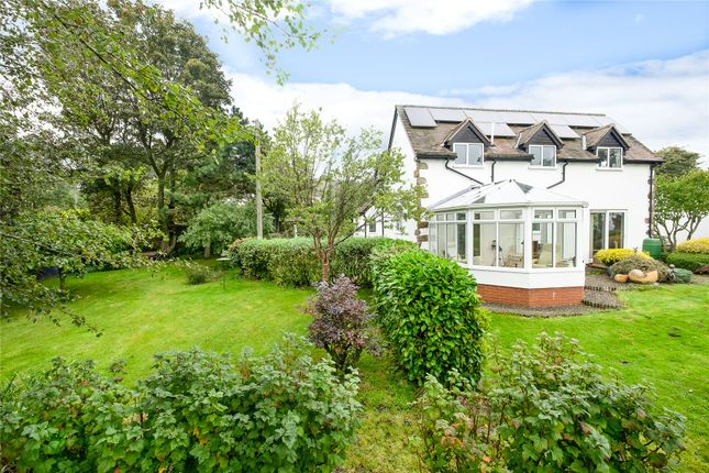 Thumbnail Detached house for sale in Shutfields, Coreley, Ludlow, Shropshire
