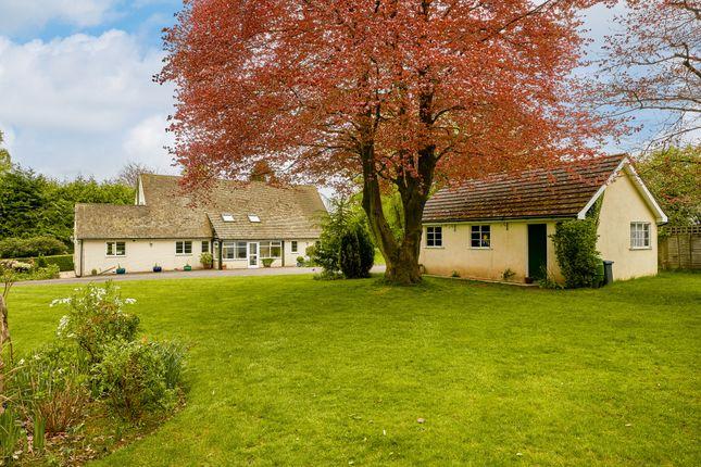 Thumbnail Detached house for sale in Upper Anstey Lane, Shalden, Alton, Hampshire