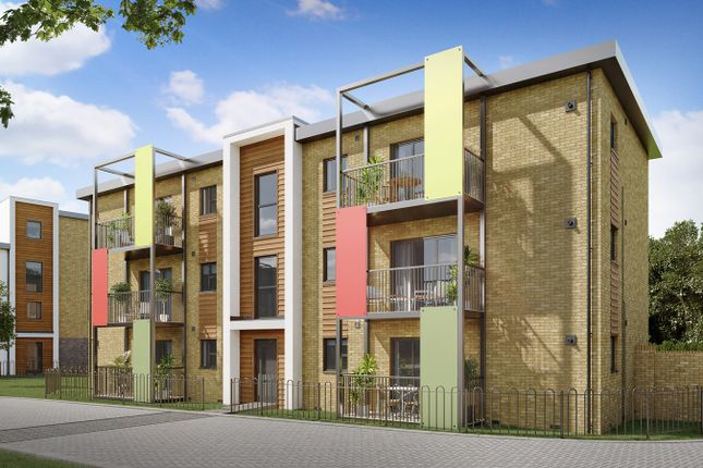 Thumbnail Flat for sale in Cowdray Avenue, Colchester