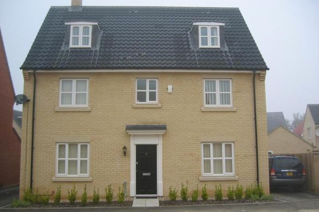 Thumbnail Detached house to rent in Privet Way, Red Lodge, Bury St. Edmunds