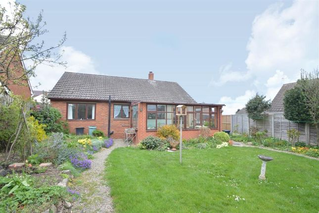 Thumbnail Bungalow for sale in Pulley Lane, Bayston Hill, Shrewsbury, Shropshire