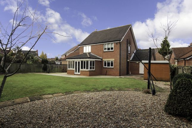 Thumbnail Detached house for sale in Haslewood, Newton Aycliffe