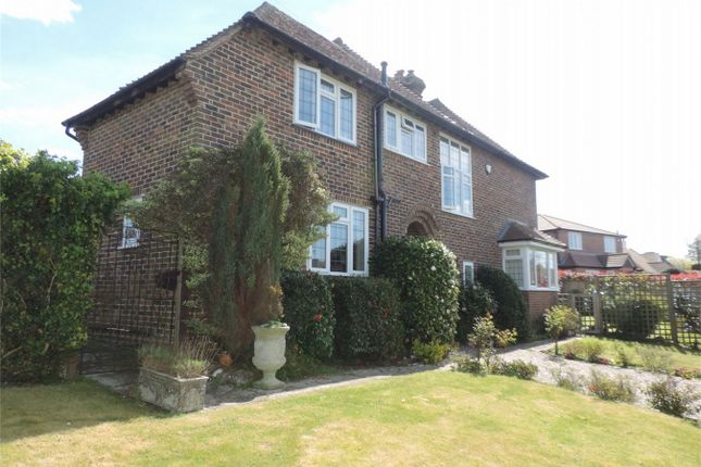 Thumbnail Detached house for sale in Maple Walk, Bexhill On Sea, East Sussex