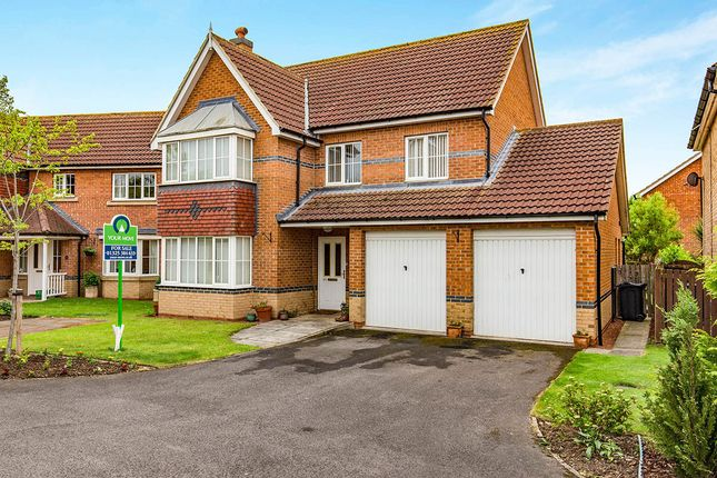Thumbnail Detached house for sale in St. Georges Gate, Middleton St. George, Darlington
