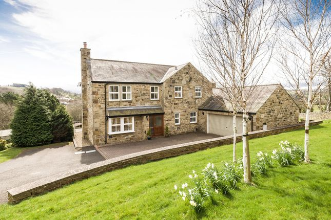 Thumbnail Detached house for sale in Revelstone, The Dene, Allendale, Hexham, Northumberland