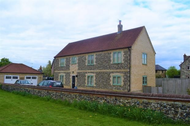 Thumbnail Detached house to rent in Wilton Road, Feltwell