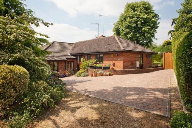 4 bed detached bungalow for sale in Springfield Road, Epsom, Surrey KT17