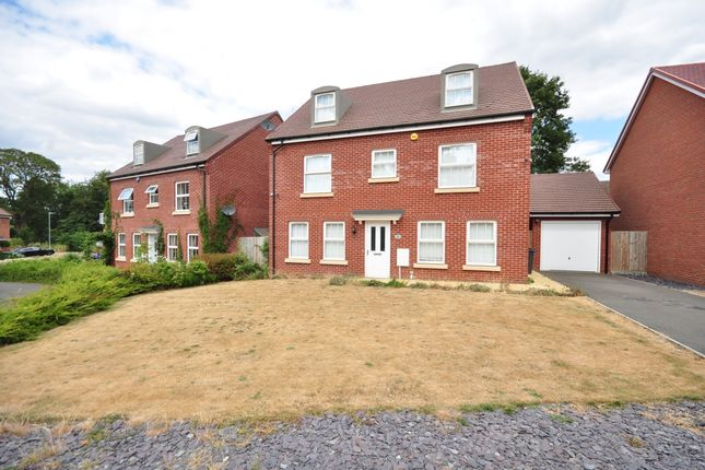Detached house to rent in Grebe Way, Maidstone