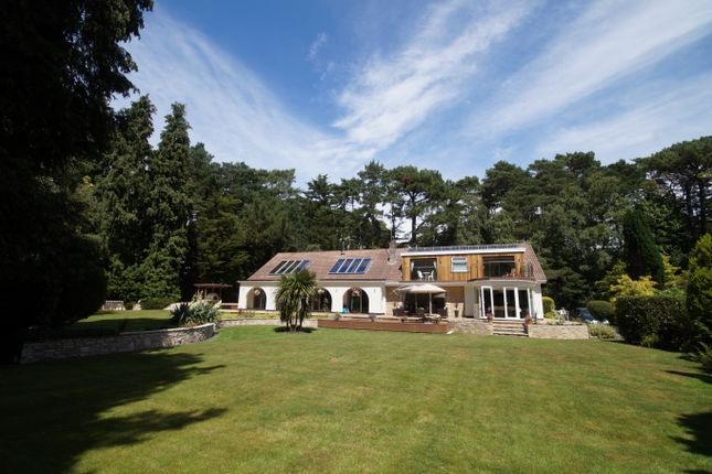 Thumbnail Detached house to rent in Dover Road, Branksome Park, Poole, Dorset