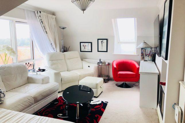 Thumbnail Flat to rent in Falmer Road, Brighton