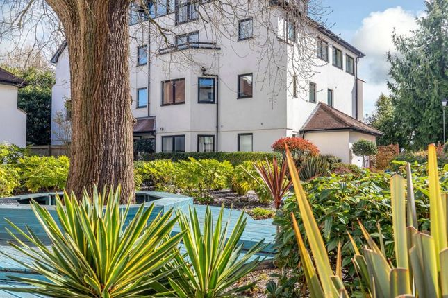 Thumbnail Property to rent in Carew Road, Northwood