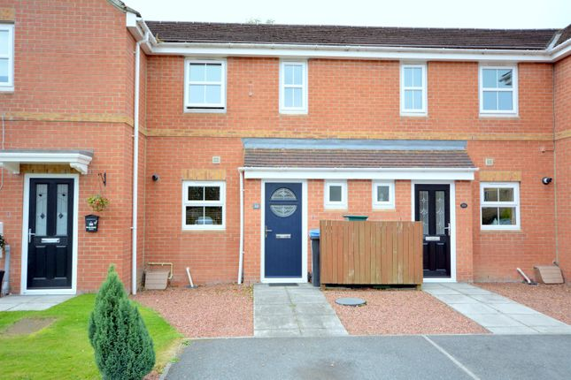 Thumbnail Terraced house for sale in Newton Grange, Toronto, Bishop Auckland