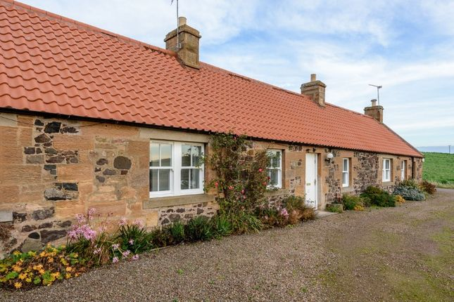 2 bed cottage to rent in Redside Farm Cottage, North Berwick, East Lothian EH39