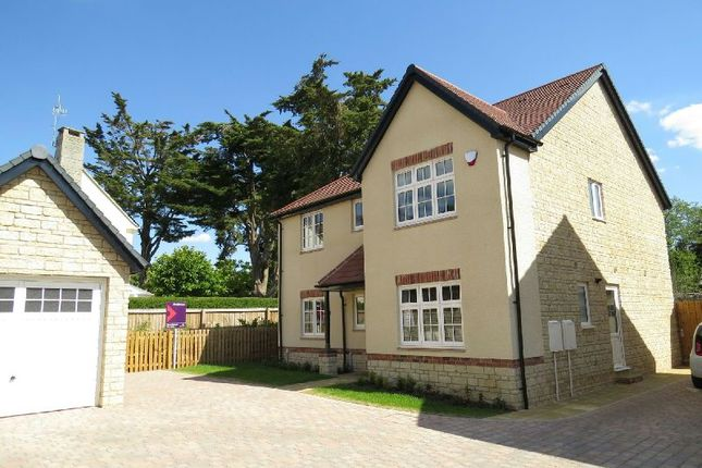 Thumbnail Detached house for sale in The Chestnuts, Winscombe