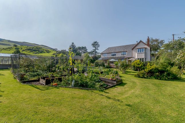 Thumbnail Detached house for sale in Machynlleth