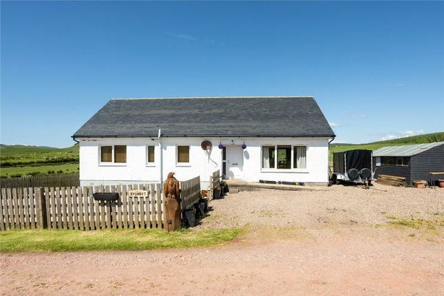 Thumbnail Bungalow for sale in Ryshott, Southend, Campbeltown, Argyll And Bute