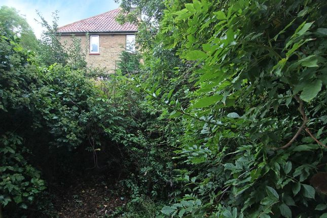 Picture No. 09 of Sunnymead Road, Roehampton SW15