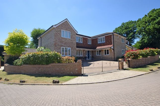 Thumbnail Detached house for sale in Lavenda Close, Hempstead