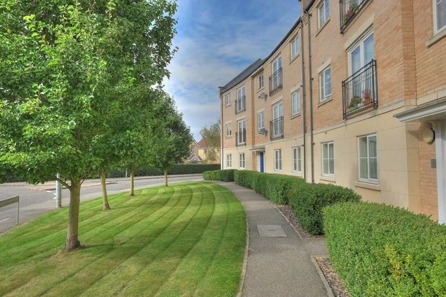 Thumbnail Flat for sale in Holly Blue Road, Wymondham