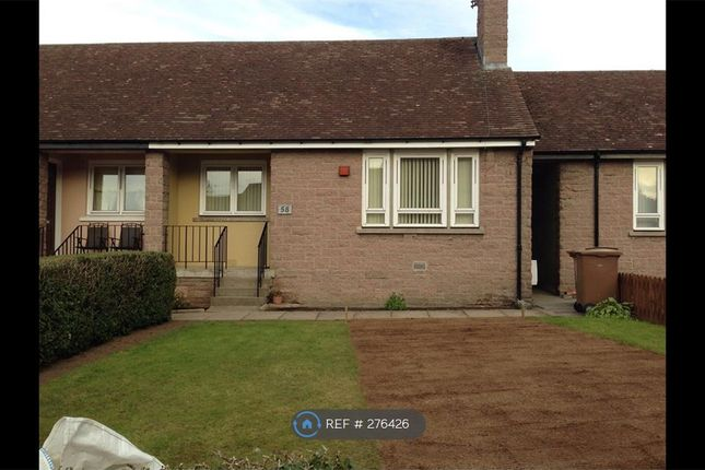 Thumbnail Bungalow to rent in Laws Road, Aberdeen
