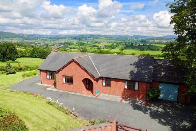 Thumbnail Bungalow for sale in Oak View, Geuffordd, Guilsfield, Welshpool, Powys
