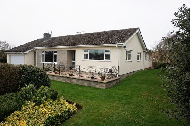 Thumbnail Detached bungalow for sale in Back Lane, Chapel Allerton