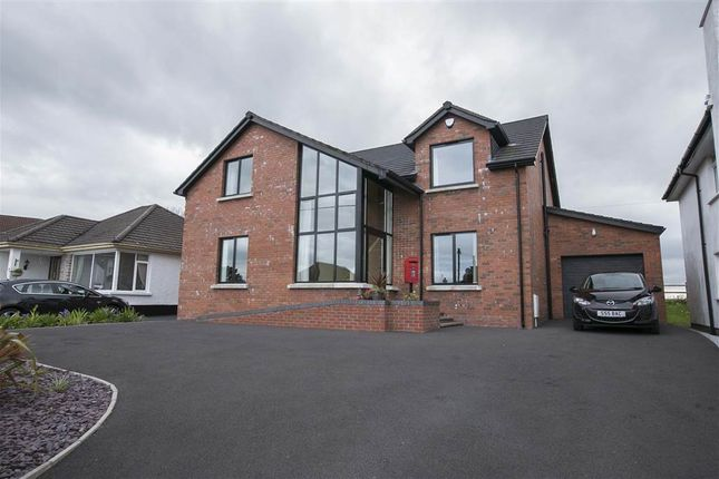 Thumbnail Detached house to rent in 11, Elsinore Avenue, Bangor