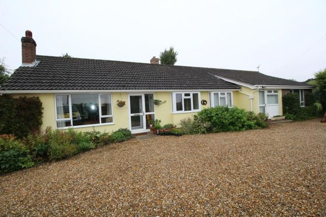 Thumbnail Detached bungalow to rent in Dunstall Green Road, Ousden, Newmarket
