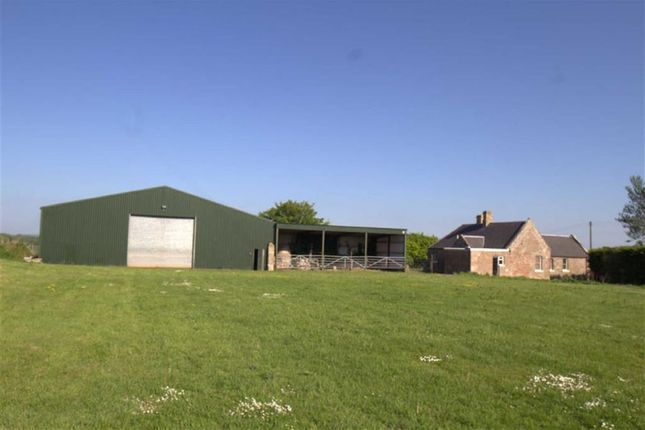 Thumbnail Detached house for sale in Chirnside, Duns, Berwickshire