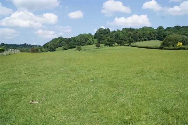 Thumbnail Land for sale in Tregynon, Newtown