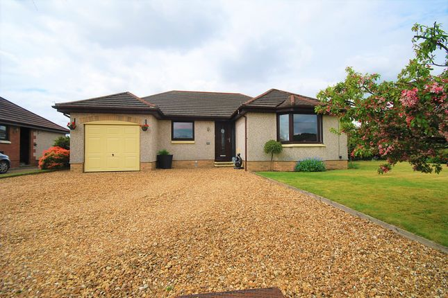Thumbnail Detached bungalow for sale in Tay Avenue, Comrie