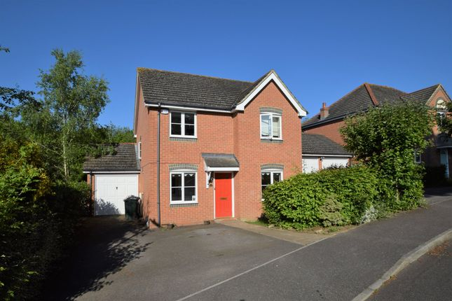 Thumbnail Detached house to rent in Forest Avenue, Ashford